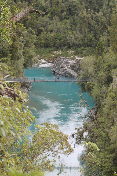 We Headed Out of Town to the Hokitika Gorge. A Jungle Pathway Led to a Rickety Bridge Over Turquoise Water.