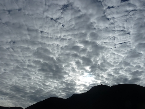 Cotton Ball Clouds in Milford Sound.